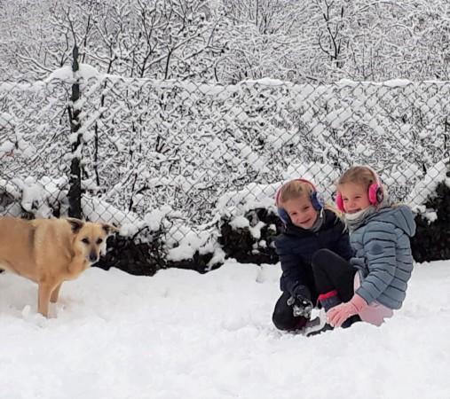 ombretta nella neve