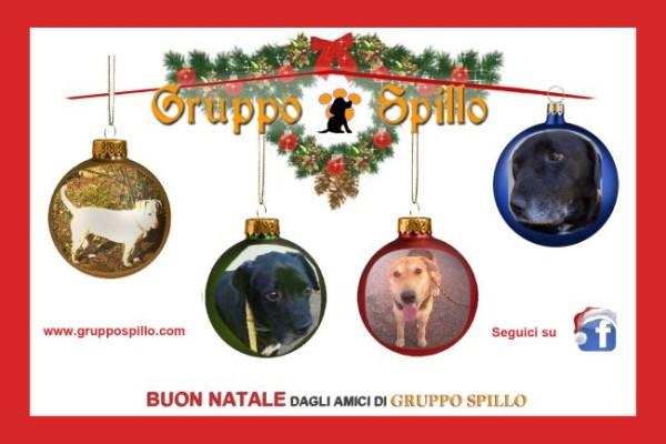 Gruppospillo_Natale2015_invito_retro_-bozza